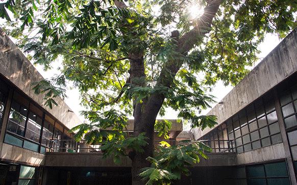 National Institute of Design Exhibition