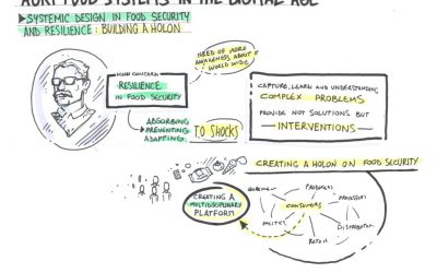 Systems thinking in food security research