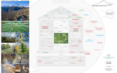 Systemic design inspired by nature: incubating a circular economy based on industrial hemp