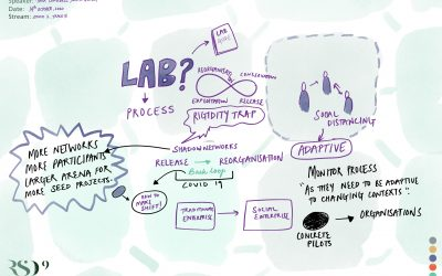 Rethinking innovation labs for complex adaptive systems going through release and reorganization